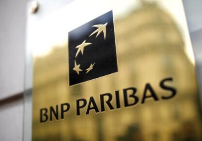 法国巴黎银行不会向在亚马逊砍伐森林的公司提供贷款