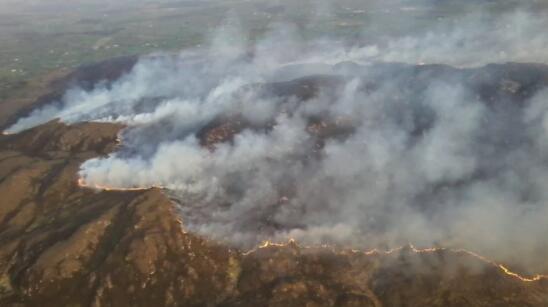爱尔兰农民协会呼吁在火险截止日期前保持灵活性