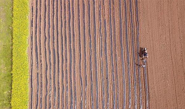 全国各地粮食作物耕地收综合性机械自动化率71%