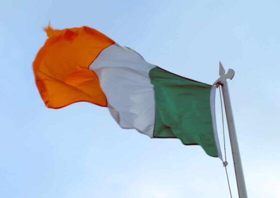 爱尔兰公用事业公司支持在爱尔兰首次可再生能源拍卖中选出的11个光伏项目