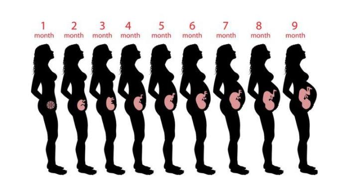 怀孕的女人不仅不能抽烟,而且还要远离二手烟